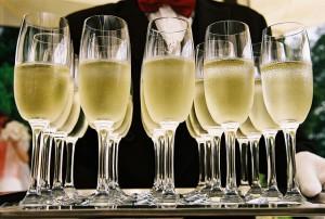 Viele Champagner-Gläser auf einem Tablett, nah.