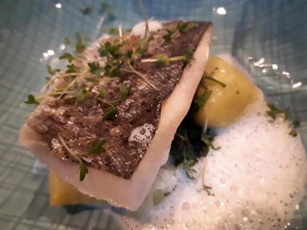 Teller, nah. Fisch, Gnocchi, weißer Grappaschaum