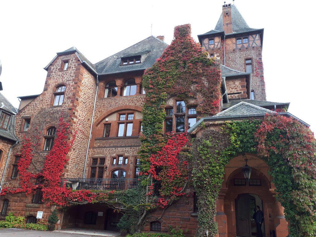 Schloss, von Wein und Efeu bewachsen