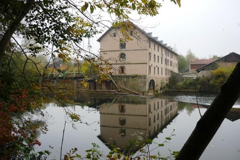 Bach, im Vordergrund Zweige, Blick auf hohes Mühlenhaus