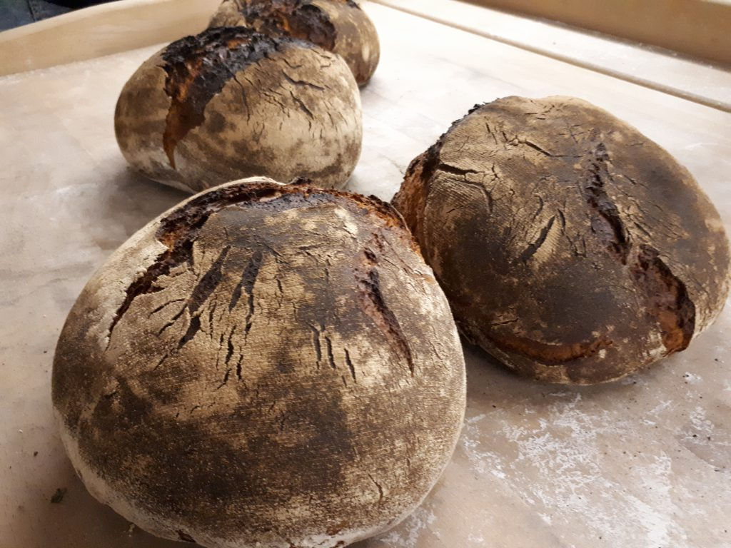 Vier braun gebackene runde Brotlaibe, nah