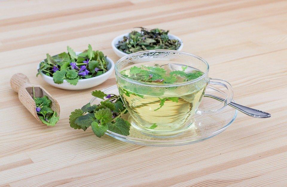 Tasse aus Glas mit grünem Kräutertee und Schälchen mit Kräutern, darunter Pfefferminze